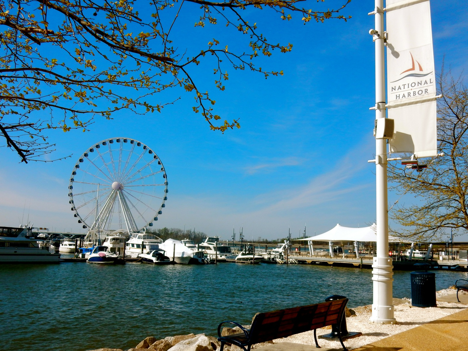 Hotels In The National Harbor Area