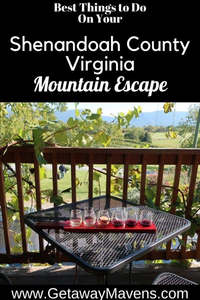 Shenandoah County VA Pin