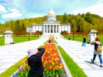 Tulips in bloom at Vermont Capitol, Montpelier VT