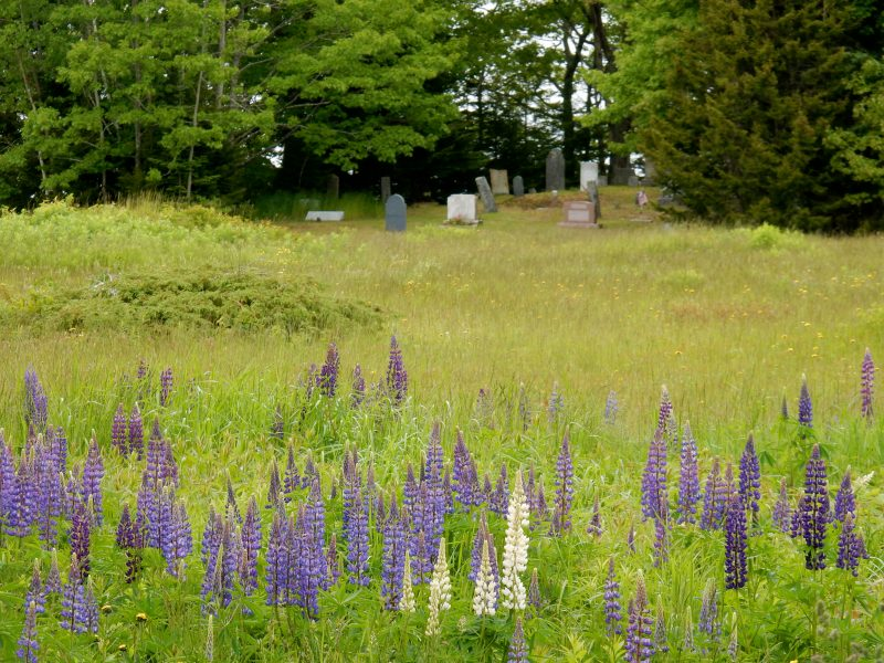 Andrew Wyeth Grave, Maine