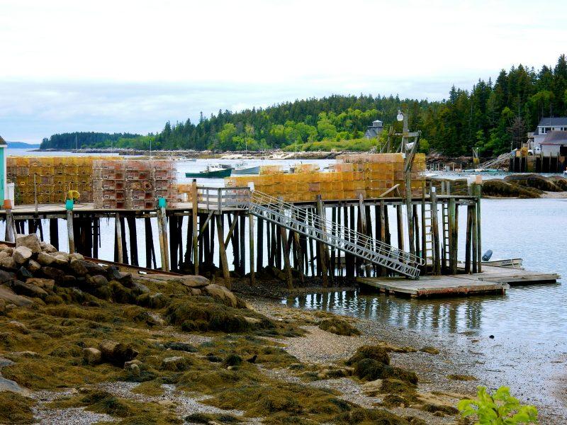Lobster traps on docks, Stonington ME