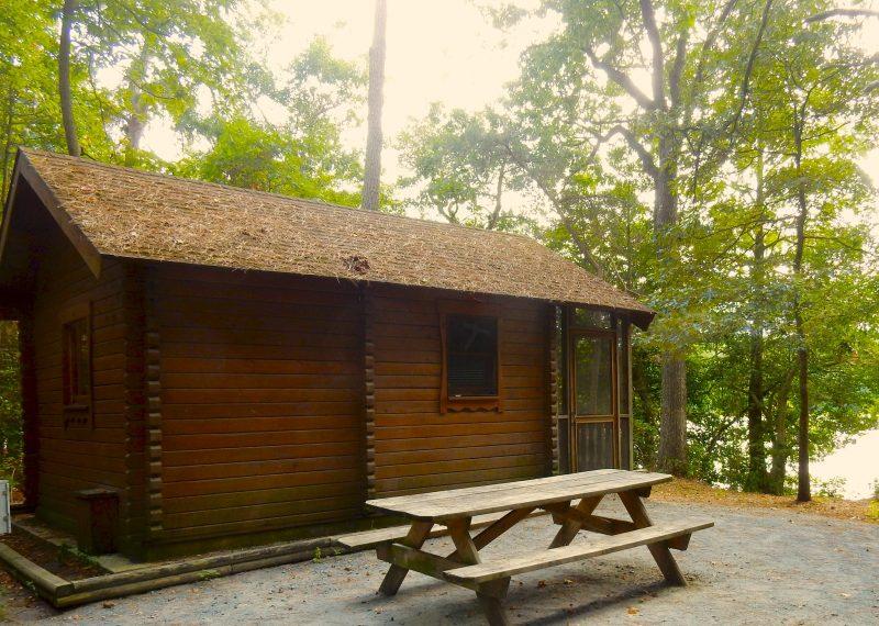 cabin-at-trap-pond-state-park-laurel-de