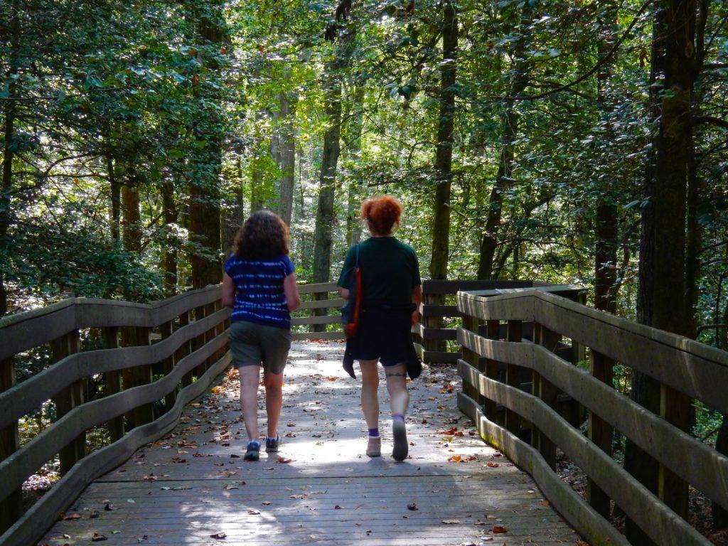 Hiking the Bob Trail at Trap Pond State Park Laurel DE
