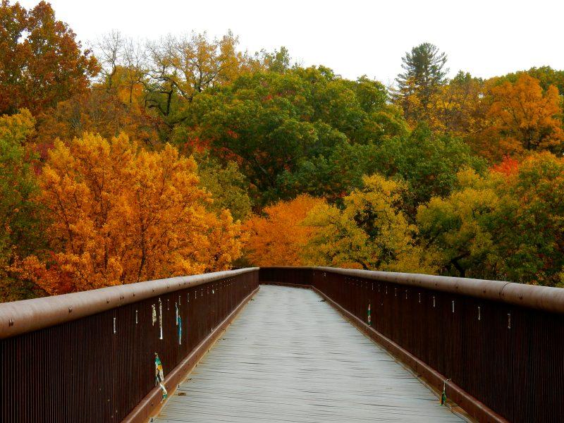 rosendale-trestle-walkill-rail-trail-rosendale-ny