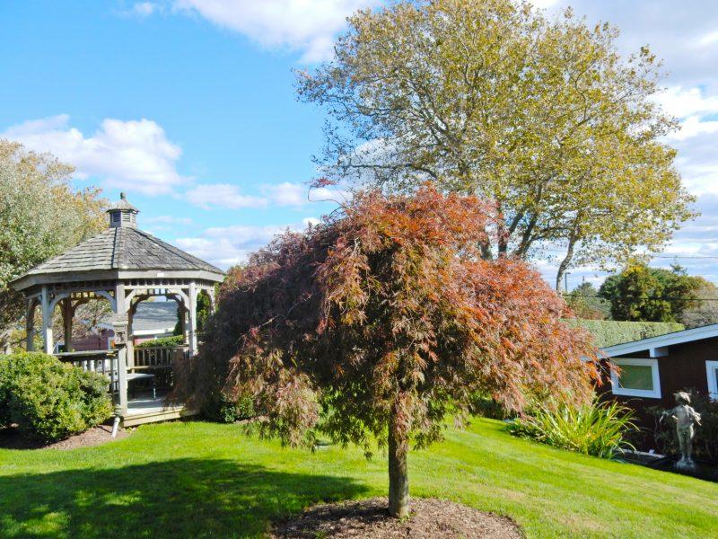 gazebo-hither-house-cottages-montauk-ny