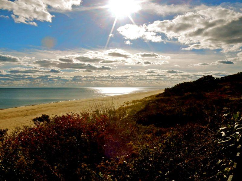 montauk-ocean-beach-montauk