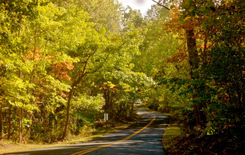road-on-shelter-island-ny