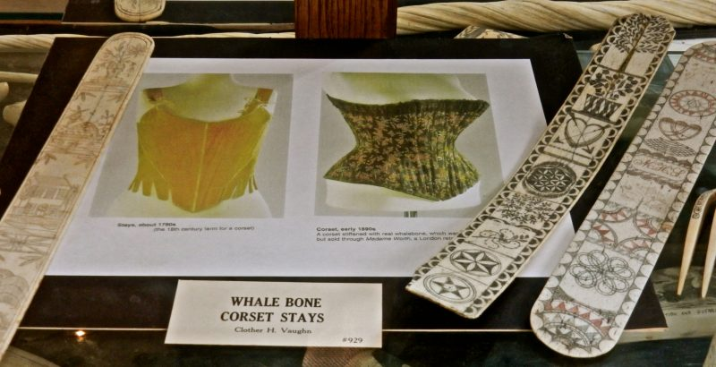 whale-bone-corset-stays-sag-harbor-whaling-museum-ny