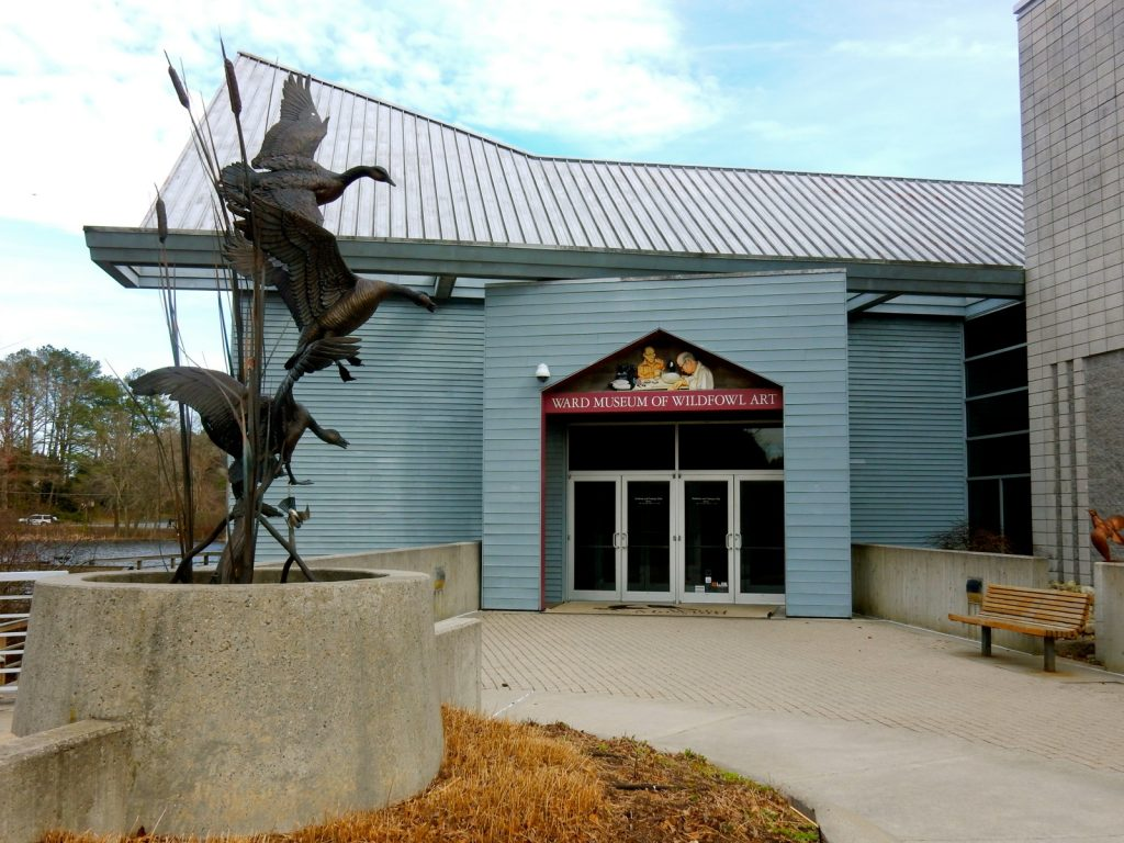 Ward Museum of Wildfowl Art - Salisbury MD