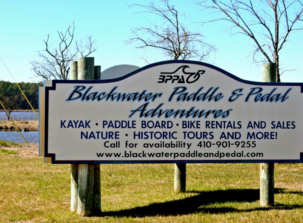 Blackwater Paddle and Pedal Adventures, Dorchestser County MD