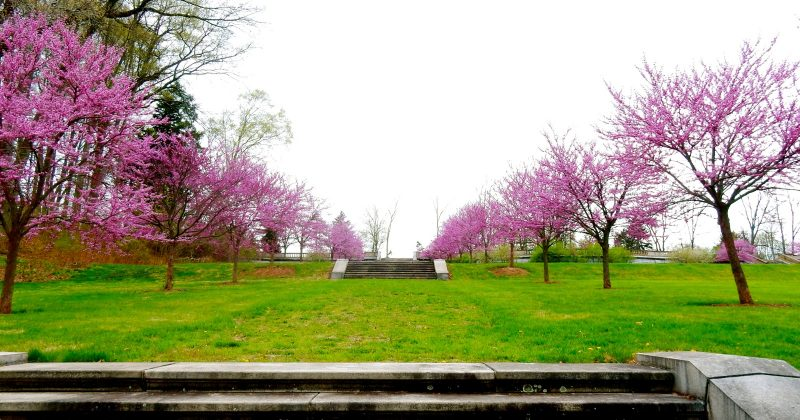 Somerset County Nj Somerville Bernardsville Quirky