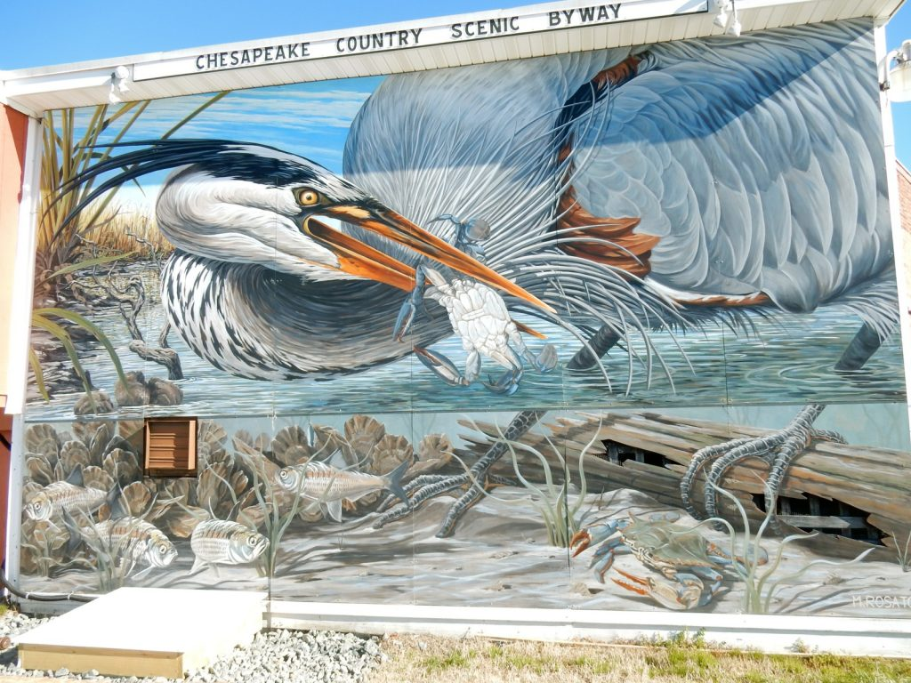 Heron Mural, Cambridge MD