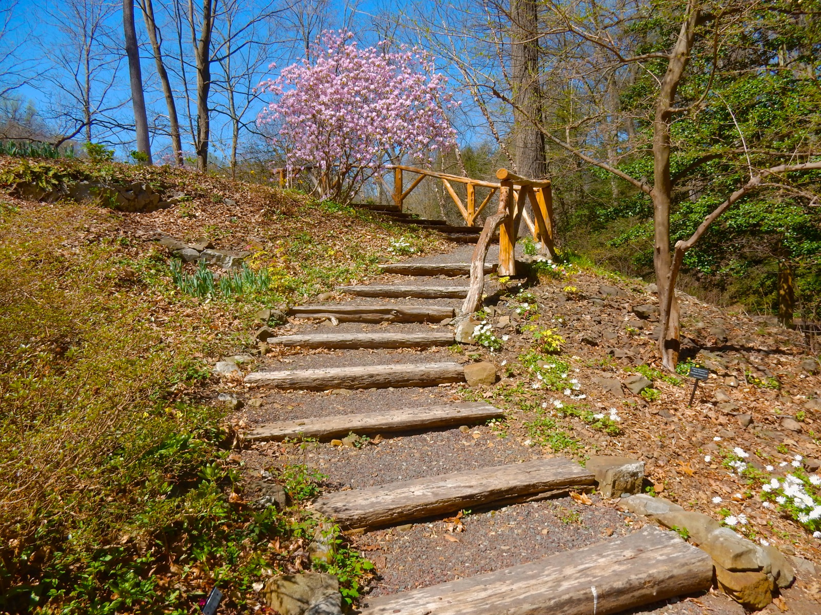 Somerset County NJ: Somerville, Bernardsville – Quirky, Quaint, and ...