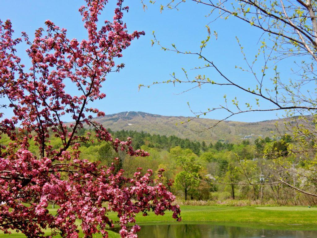 Okemo Mountain - Ludlow VT - Okemo Valley Getaway