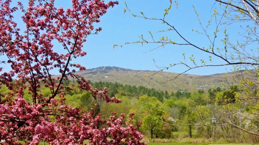 Okemo Valley Region, VT: It's Not All About the Hill