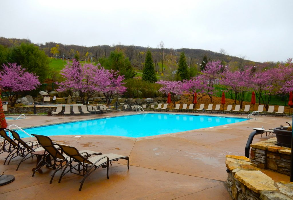 Pool, The Appalachian at Mountain Creek NJ