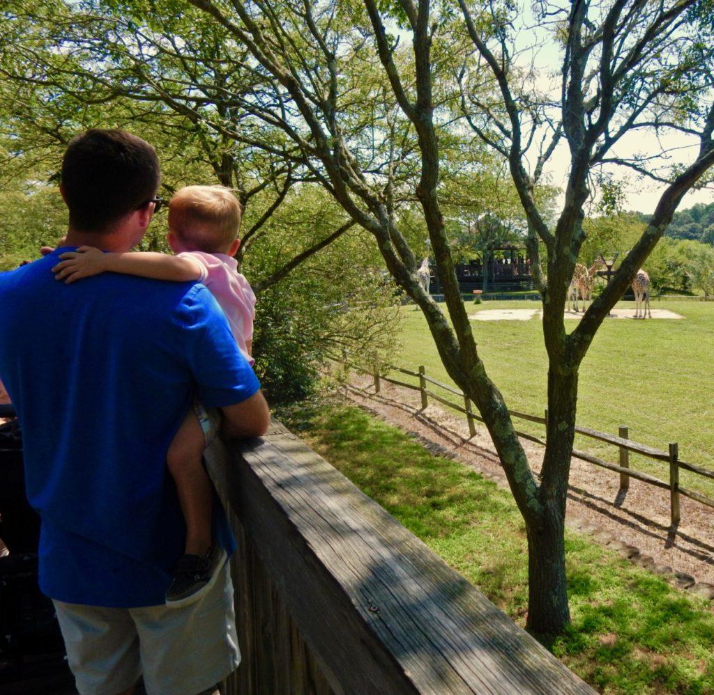 Cape May County Zoo, NJ