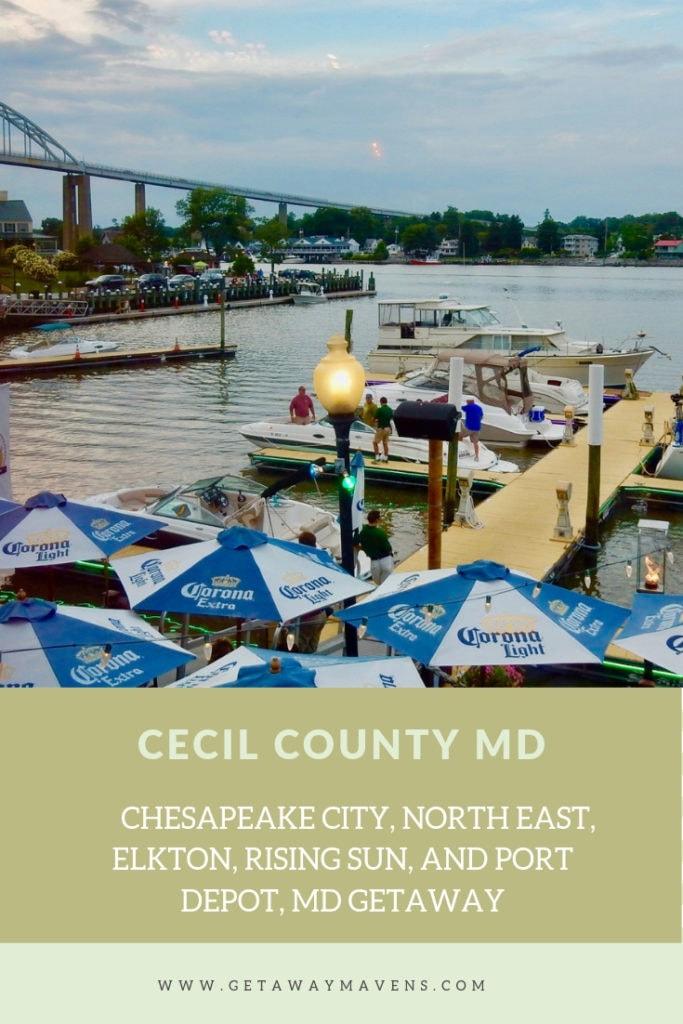 Cecil County MD Pin