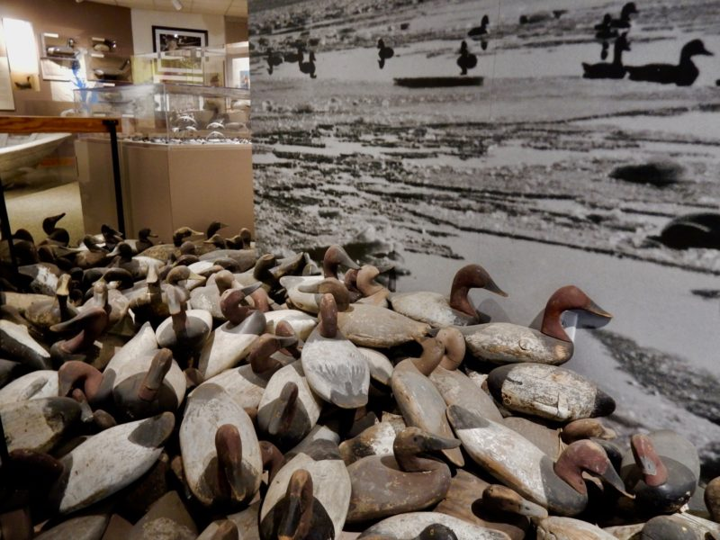 Decoy Museum, Havre de Grace MD