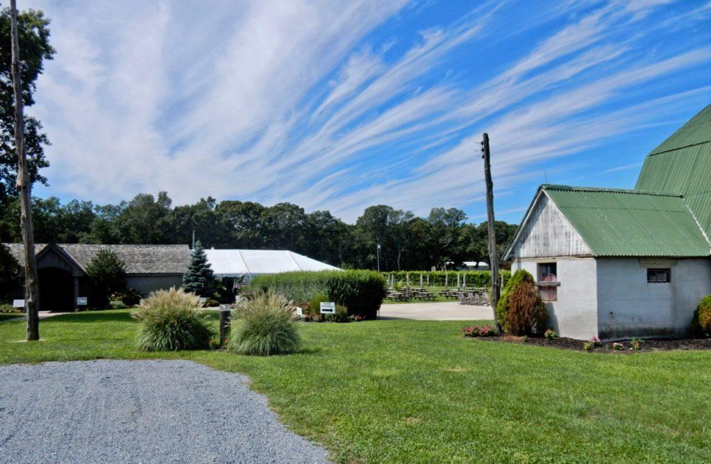 Hawk Haven Vineyards NJ