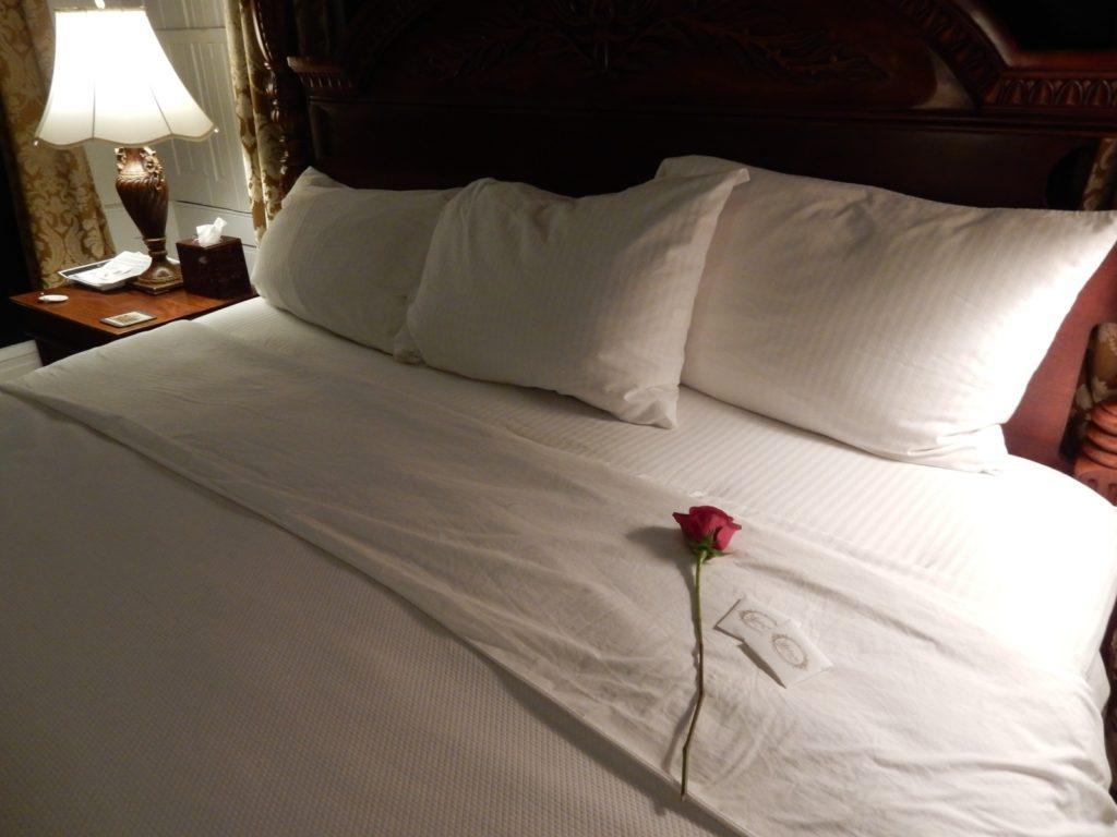 Rose on Bed - Antrim 1844