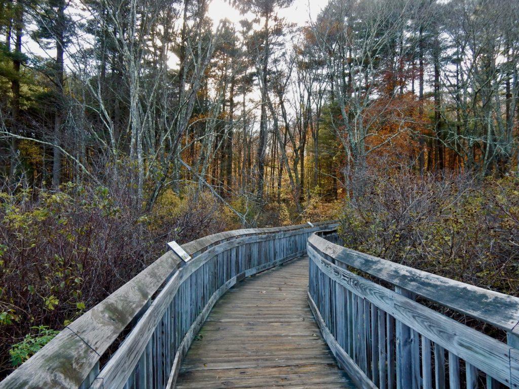 Boardwalk Chatfield Hollow SP Killingworth CT