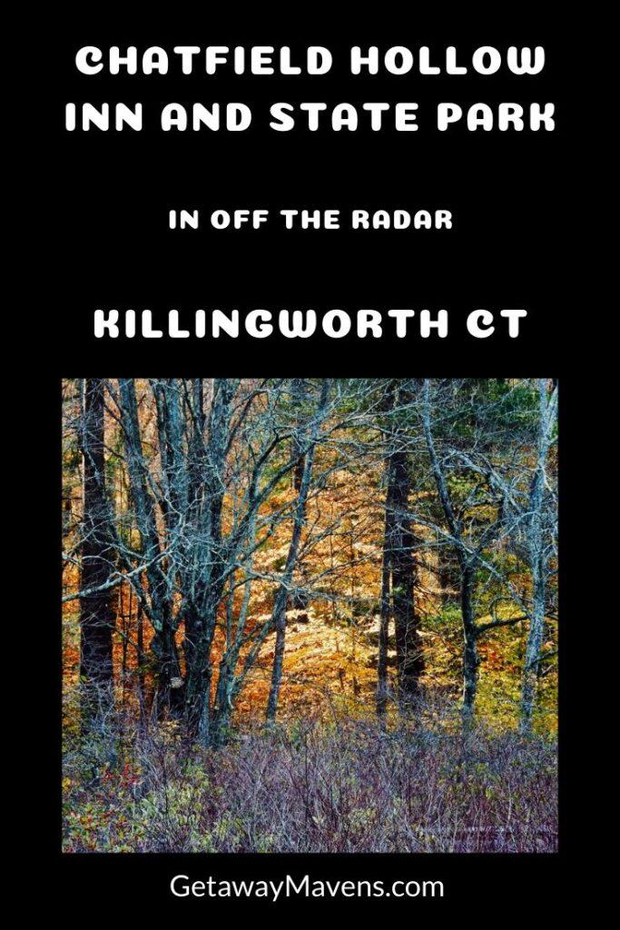 Chatfield Hollow Killingworth CT Pin