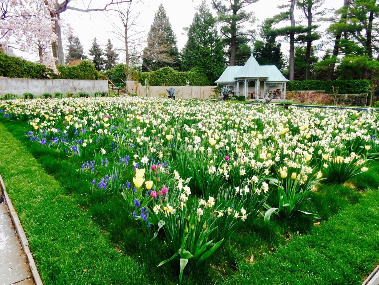 Chanticleer Garden Wayne PA