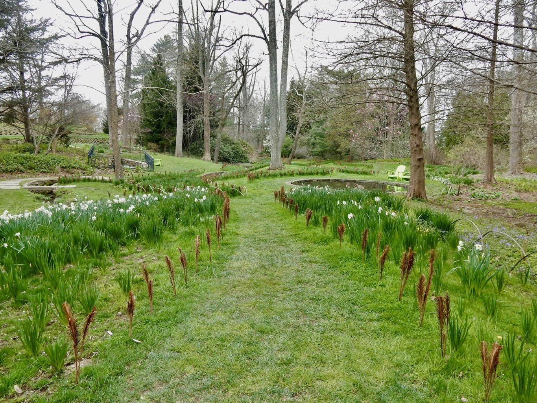 Spring pathway, Chanticleer Garden PA