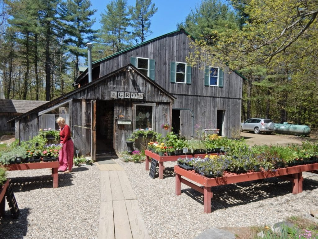 Pickity Place Nursery Mason NH