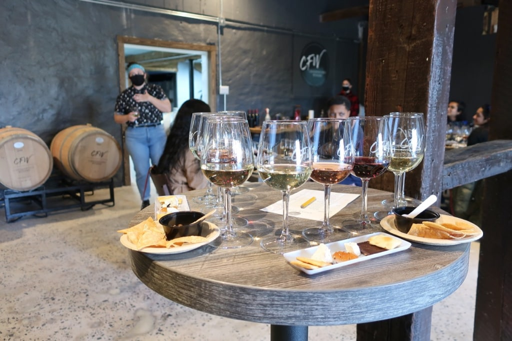 Chaddsford Winery Wine tasting and pairing event