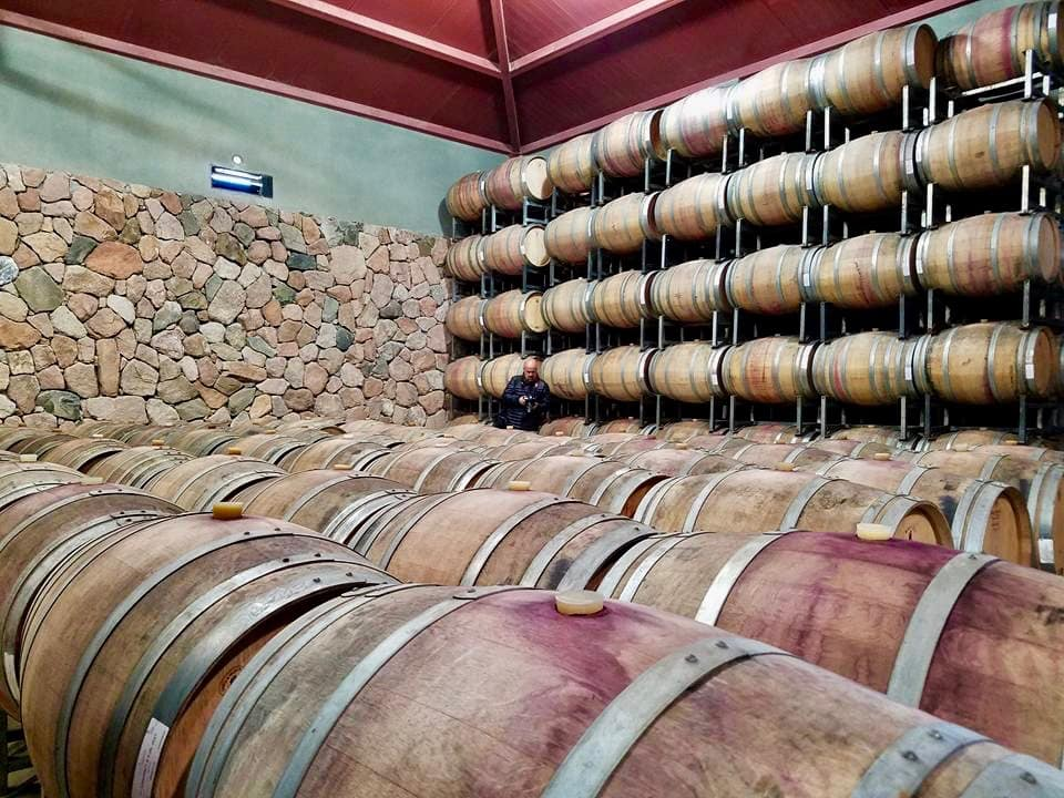 Winery Storage Casks Mendoza Argentina