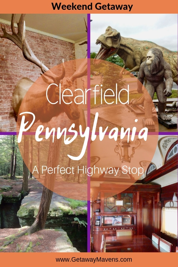 Clearfield County PA Pin