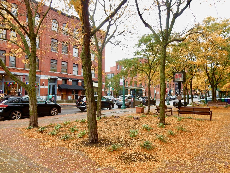 Armory Square Syracuse NY Mid Autumn
