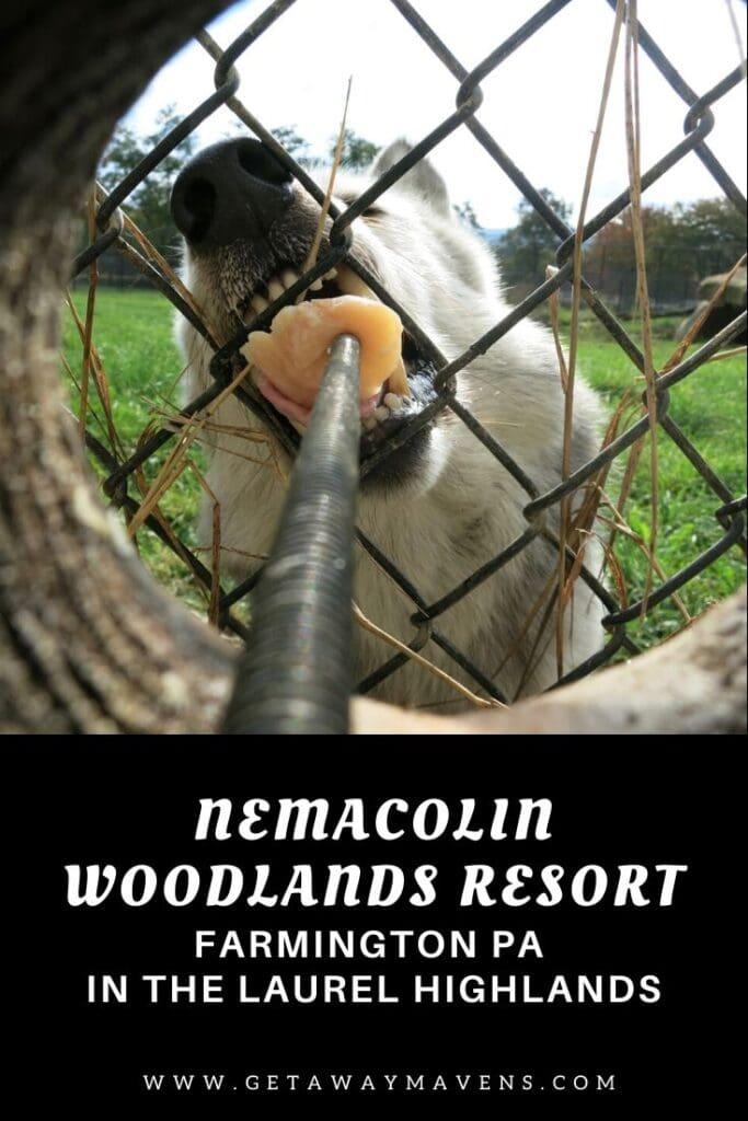 Nemacolin Woodlands Resort Pin