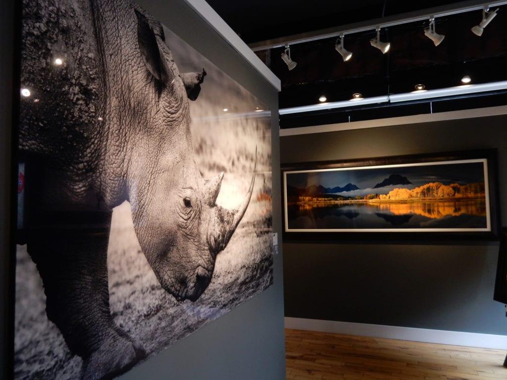 Benjamin Walls Gallery Bristol VA