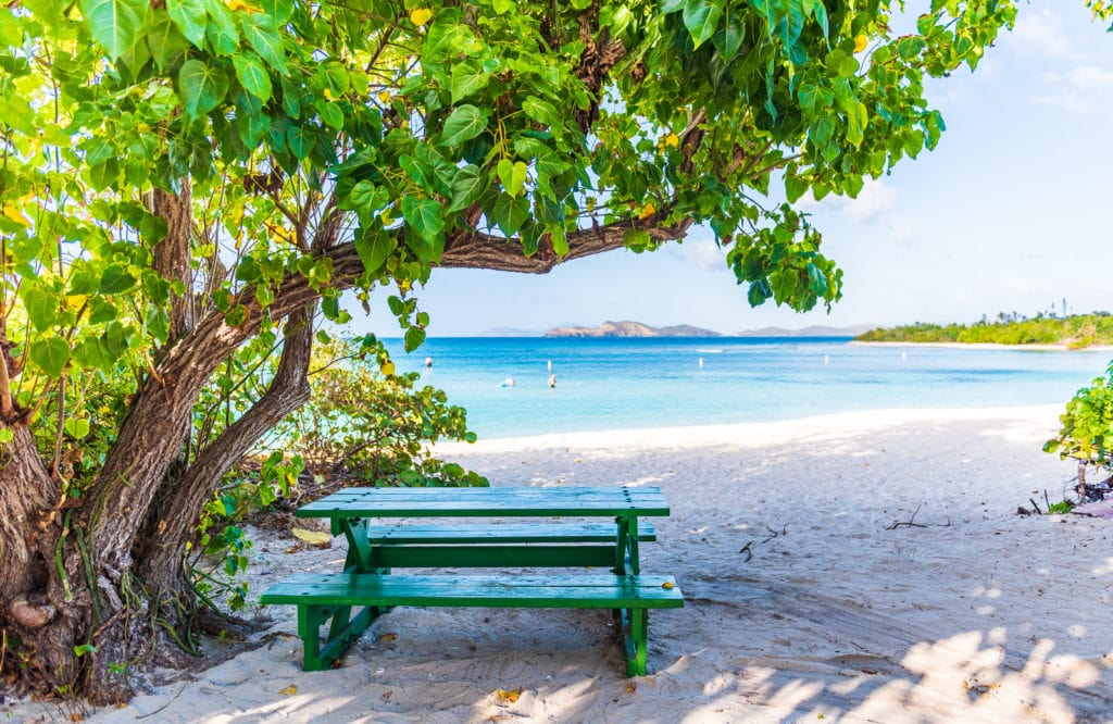 A green picnic table under a shady tree at Lindquist Beach in St. Thomas US Virgin Islands