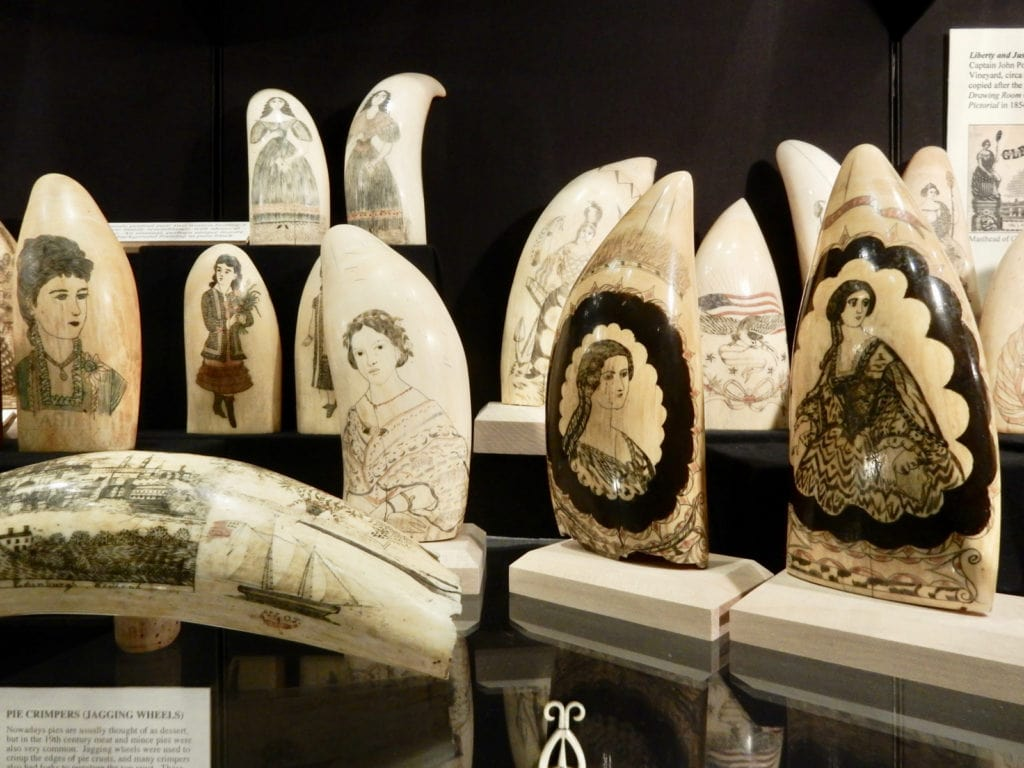 Scrimshaw New Bedford Whaling Museum MA
