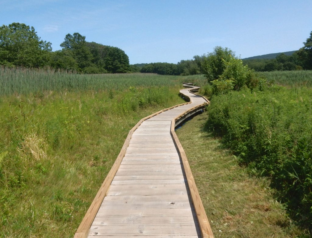 Appalachian Trail Boardwalk through marsh and fields in New Jersey