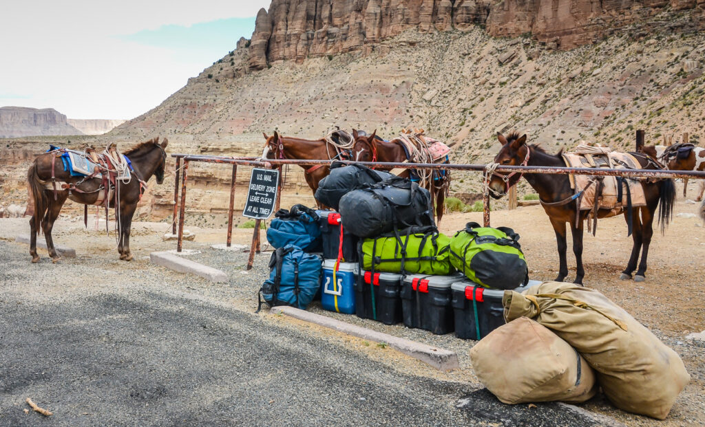 Backpacks ready to be carried to Havasu Falls by mule.