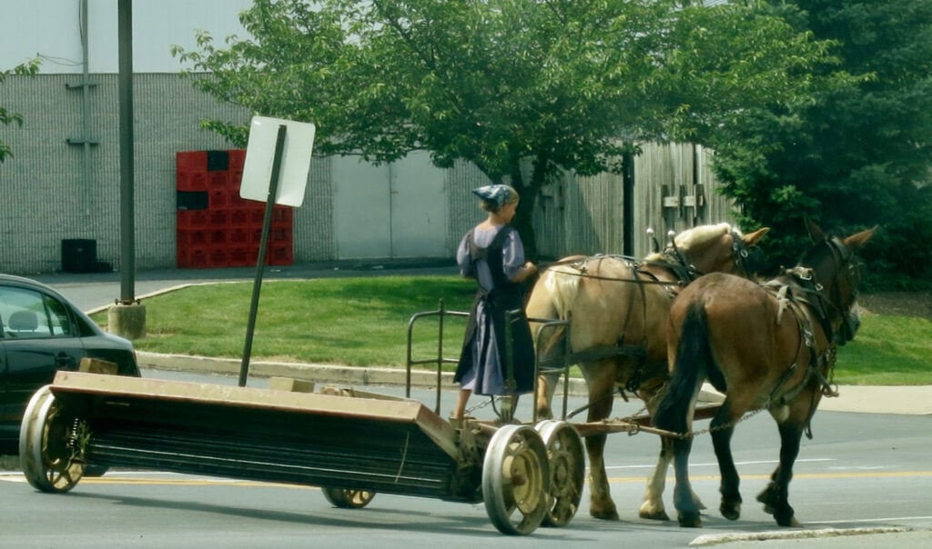 Amish-Girl-Driving-Work-Horses-PA