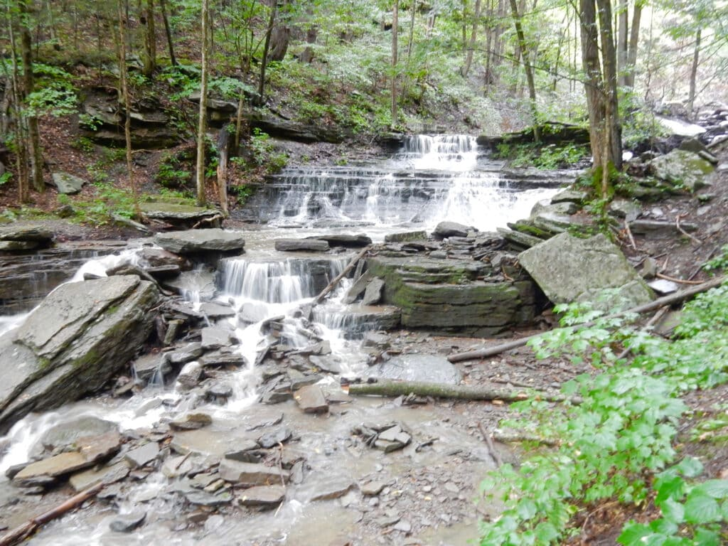 Little Fourmile Run Waterfall PA