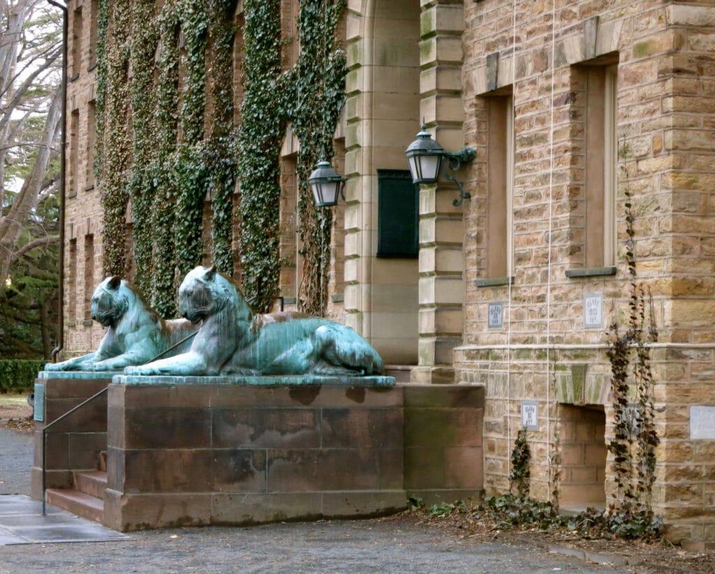Princeton Campus Lions