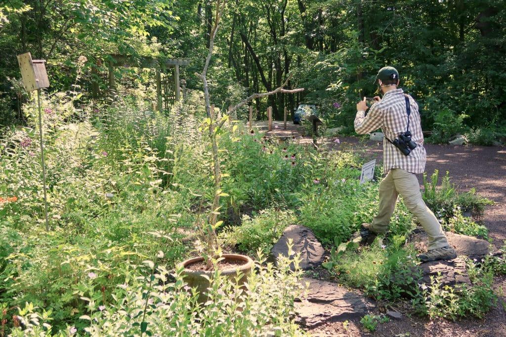 Wildflower Garden Bowmans Hill Wildflower Preserve Bucks County PA