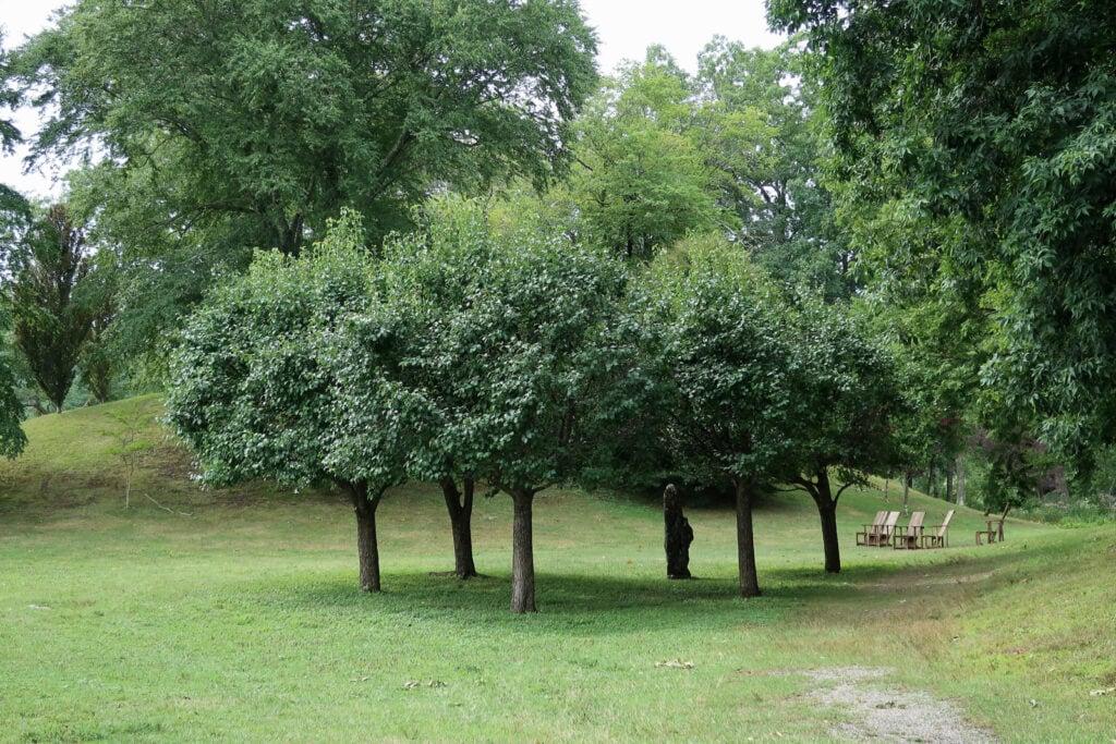 Standing stones Innisfree Garden NY