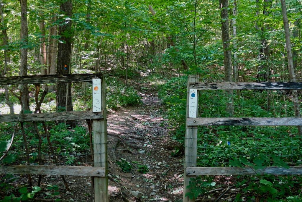 Trailhead Stissing Fire Tower Trail Pine Plains NY