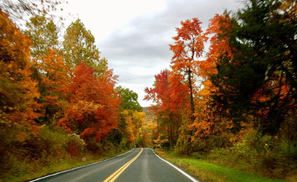 Massachusetts road for Fall Foliage