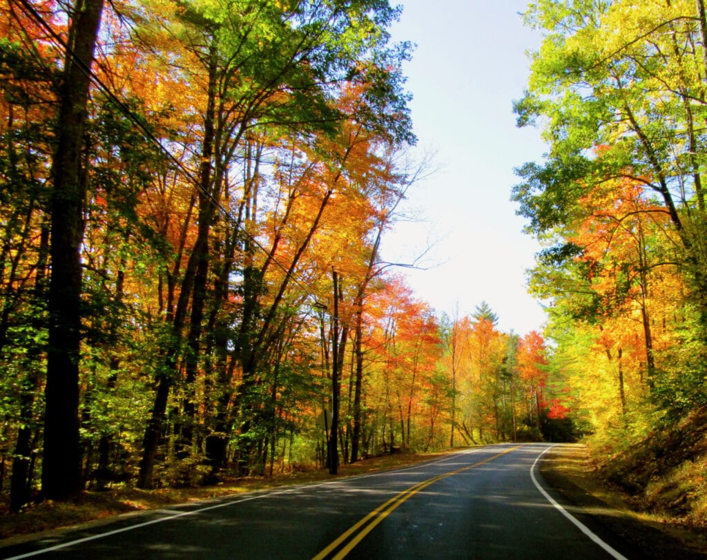 New England road in Fall