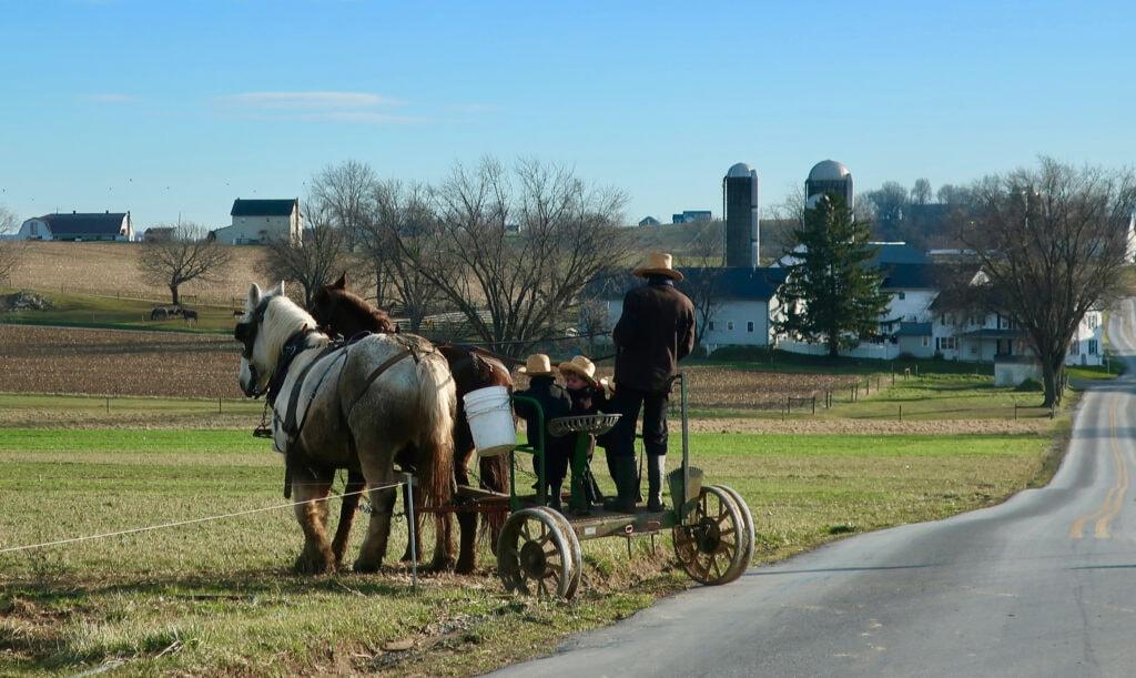 Amish-Farm-Family-Working-Draft-Horses-PA