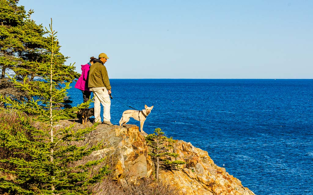 Couple walks dog on rocky outcropping at Acadia National Park in Maine. Hikes are a popular thing to do at romantic destinations in Northeast US.